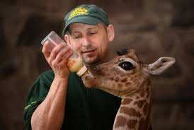 zookeeper pictures. Beautiful Pictures Do You Have Sales Hunters Or Zookeepers For Zookeeper Pictures P