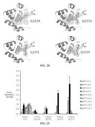 Ep2702150b1 Lipase Variants Having Increased Enzyme