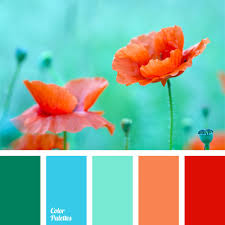 Color Palette #50