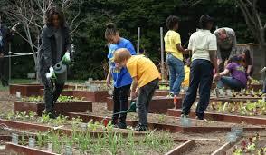 Michelle Obama Kitchen Garden Spring Planting At White House Kitchen Garden In 2014