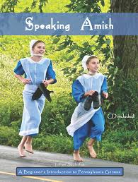 speaking amish lillian stoltzfus com books