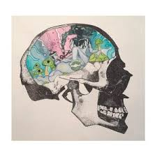 Dreamer Skull Mixed Media by Isabelle Miller