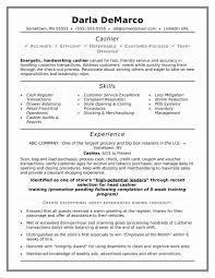 Resume Format Examples Awesome Cv Resume Format Valid Elegant Resume