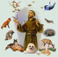 Image result for St Francis Prayers / Animals