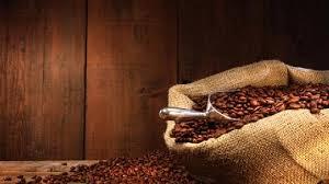 Us Coffee C Futures Price Investing Com India