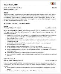 Business Management Resume Objective Ecommerce Business Resume Objective Piqqus Com