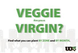 Planting Chart Zone 6 8 Veggie Virgin Vegetable Planting Guide Calendar By Zone