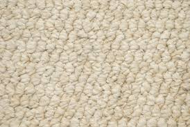 Berber Carpets Description Pros and Cons