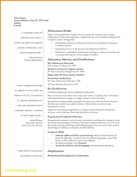 Free Assistant Principal Resume Templates Entry Level Assistant Principal Resume Templates Senior Educator 49