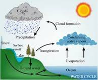 the water cycle essay business letter writing help essay the water cycle essay