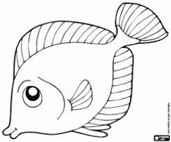 Disegni Di Animali Marini Da Colorare E Stampare 2