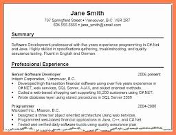 Example Resume Summary Delectable Good Resume Summary Samples Impressive Resume Summary Template