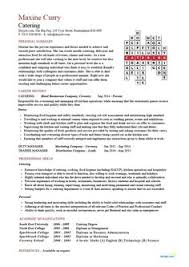 Controller Resume Template, Cv, Example, Summary, Job Description ...