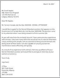 Online Job Cover Letter Cover Letter Sample For Job Application Download Example