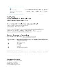 Sample Plain Text Resume Gallery Of Free It Project Manager Resume