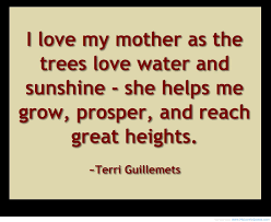 30+ Heart touching mother quotes