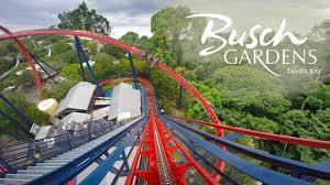 sheikra backwards roller coaster pov busch gardens ta brandons
