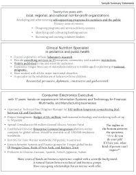 Work Statement Examples Career Summary Examples For Resume Best Job Statement Statemen
