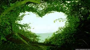 beautiful-love-nature-wallpaper-hd ...