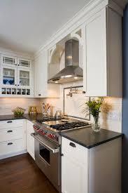 kitchenaid hood. kitchen traditional-kitchen kitchenaid hood