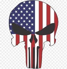 unisher skull usa flag thin blue line