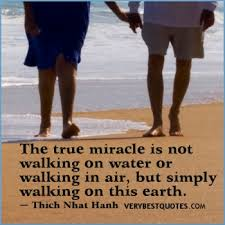 Image result for Journal of Alternative and Complementary Medicine show that going barefoot reduces your excess charge