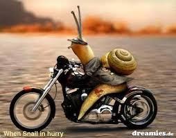 Glückwünsche Geburtstag Motorrad Bmwkforum Liebe