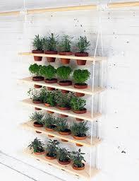 Hanging Herb Garden   Fun and Easy Indoor Herb Garden Ideas
