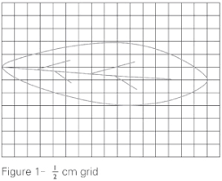 Space And Geometry Properties Of Geometric Figures