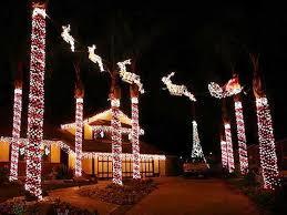 outdoor christmas lights idea unique outdoor. Image Of: Unique Outdoor Christmas Lights Ideas For Trees Idea I