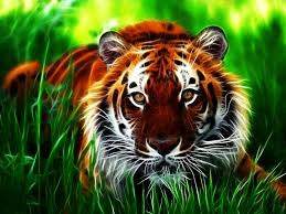 Free download Tiger 3D Wallpapers ...