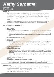 Resume Headline Examples Resume For Study