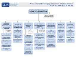 Dhhs Organisational Chart 25 Uncommon Vertical Organisation Chart
