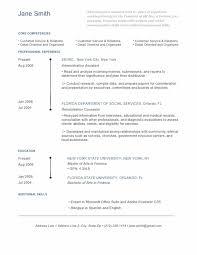 Graphic Designer Resume Examples Pusatkroto Com