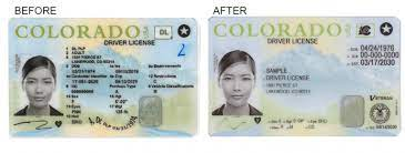 driver license and id cards