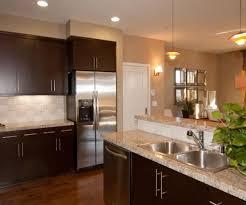 modern kitchen paint colors ideas. Simple Ideas Wonderful Modern Kitchen Paint Colors Ideas And  Fabulous On D