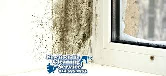how to remove musty smell from bathroom mildew smell what causes it how to eliminate it