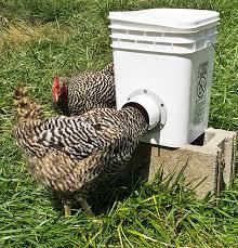 PVC Chicken Feeder 4 Steps with