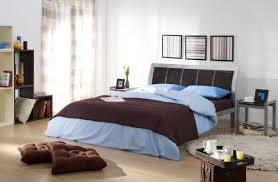 Amazing Cool Bedroom Colors For Guys With Mens Bedroom Ideas