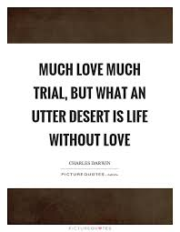 Life Without Love Quotes Life Without Love Quotes Delectable A Life Without Love Desicomments 31