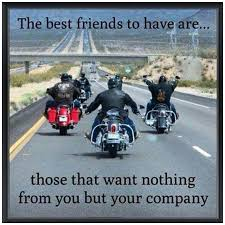 Motorcycle Quotes Extraordinary Harley Funny Biker Quotes 48 Best Motorcycle Quotes 48 Images On