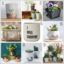 Unusual Pot Plants 54 Fascinating Ideas On Perk Up Your Planters