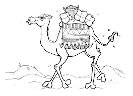 Small Picture Mormon Share Camel Cindys Camels Object lessons and