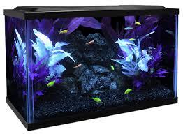 petco glofish. Brilliant Petco Glofish Tank With Petco W