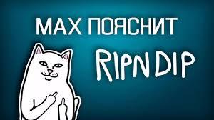 MAX ПОЯСНИТ | <b>RIPNDIP</b> - YouTube