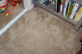 sal suds on my carpets has left me schless