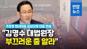 주호영 국민이 독재의 심각성을 인식하고 함께 맞서야 | 연합뉴스