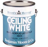 ceiling white paintHelp Me Choose Ceiling Paint  Please  Painting  DIY Chatroom