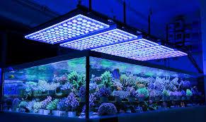led aquarium reef light