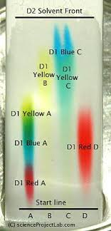 Chromatography Lab A Fun Chromatography Lab With Filter Paper As The Solid
